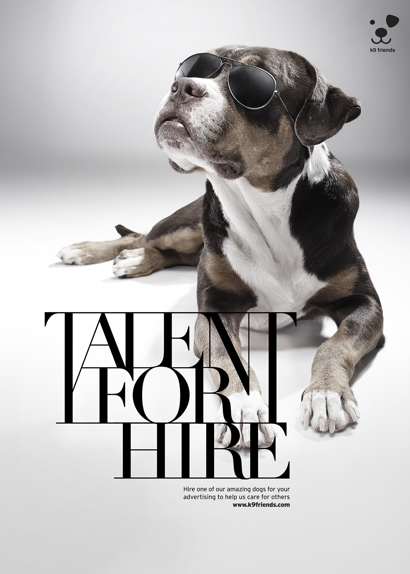 K9 Talent For Hire Oliver