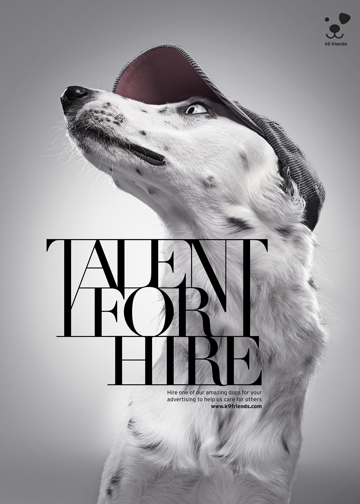 K9 Talent For Hire Sinatra